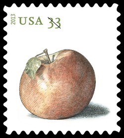 Northern Spy Apple United States Postage Stamp | Apples