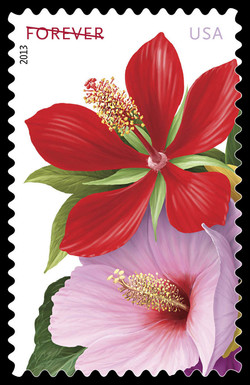 Red and Pink Hibiscus United States Postage Stamp | La Florida