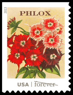 Phlox Seed Packet United States Postage Stamp | Vintage Seed Packets