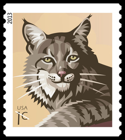 Bobcat - Lynx Rufus United States Postage Stamp