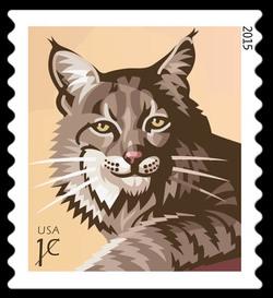 Bobcat United States Postage Stamp
