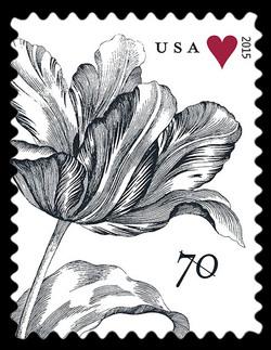 Vintage Tulip United States Postage Stamp | Weddings