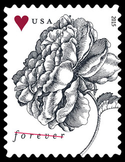 Vintage Rose United States Postage Stamp | Weddings