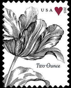 Vintage Tulip United States Postage Stamp | Weddings