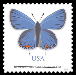 Eastern Tailed-Blue Butterfly United States Postage Stamp