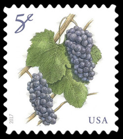 Grapes United States Postage Stamp