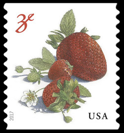 Strawberries United States Postage Stamp