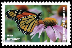 Monarch Butterfly on a Coneflower United States Postage Stamp | Protect Pollinators