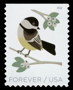 Black-Capped Chickadee - Poecile Atricapillus United States Postage Stamp | Birds in Winter