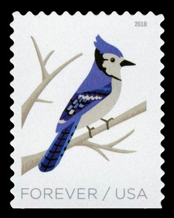 Blue Jay - Cyanocitta Cristata United States Postage Stamp | Birds in Winter