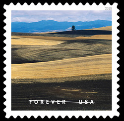 Plowed Wheat Fields in Palouse Hills United States Postage Stamp   O Beautiful
