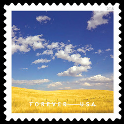 Montana Field of Wheat  United States Postage Stamp | O Beautiful