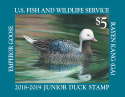 Emperor Goose Junior Duck Stamp United States Postage Stamp | Federal Duck Stamp