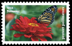 Monarch Butterfly on a Zinnia United States Postage Stamp | Protect Pollinators