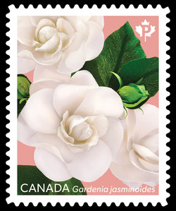 Gardenia Canadian Postage Stamp Series