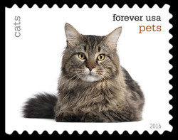Cats United States Postage Stamp | Pets