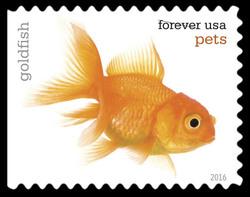 Goldfish United States Postage Stamp | Pets