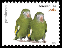 Parakeets United States Postage Stamp | Pets