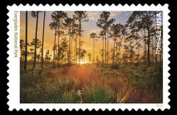 Everglades National Park - Florida United States Postage Stamp | National Parks