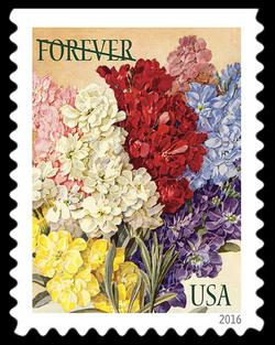 Stocks United States Postage Stamp | Botanical Art