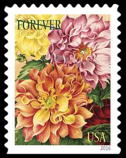 Dahlias United States Postage Stamp | Botanical Art