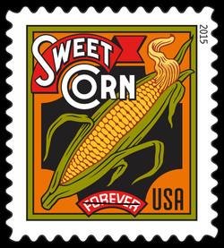 Sweet Corn United States Postage Stamp | Summer Harvest