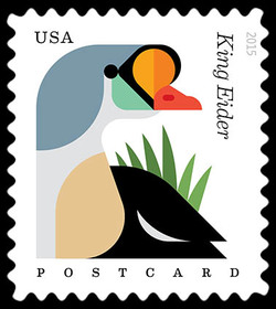King Eider - Somateria Spectabilis United States Postage Stamp | Coastal Birds