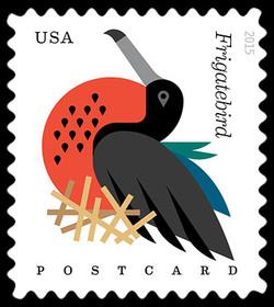 Magnificent Frigatebird - Fregata Magnificens United States Postage Stamp | Coastal Birds