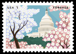 Capitol Building With Pink and White Dogwood United States Postage Stamp | Gifts of Friendship
