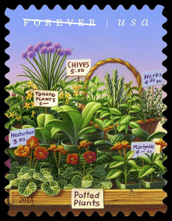 Potted Plants United States Postage Stamp | Farmers Markets
