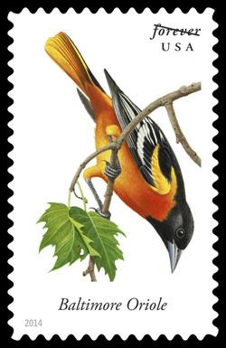 Baltimore Oriole - Icterus Galbula United States Postage Stamp | Songbirds