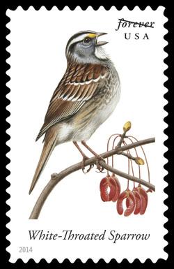 White-throated Sparrow - Zonotrichia Albicollis United States Postage Stamp | Songbirds