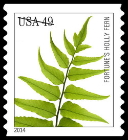 Fortune's Holly Fern United States Postage Stamp | Ferns