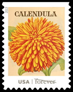 Calendula Seed Packet United States Postage Stamp | Vintage Seed Packets