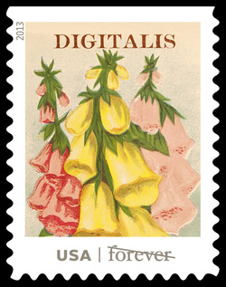 Digitalis Seed Packet United States Postage Stamp | Vintage Seed Packets