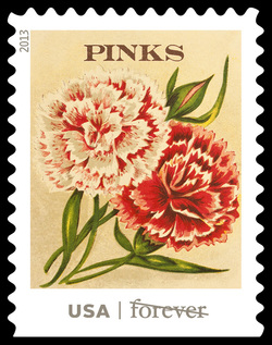 Pinks Seed Packet United States Postage Stamp | Vintage Seed Packets