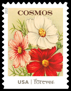 Cosmos Seed Packet United States Postage Stamp | Vintage Seed Packets