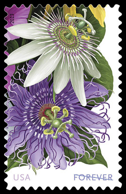 White and Purple Passionflowers United States Postage Stamp | La Florida