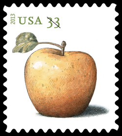 Golden Delicious Apple United States Postage Stamp | Apples