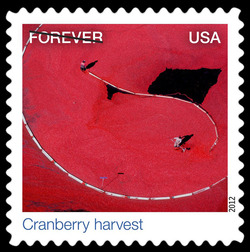 Cranberry Harvest United States Postage Stamp | Earthscapes - Satellite Images