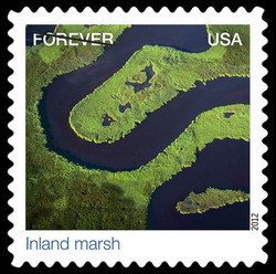 Inland Marsh United States Postage Stamp | Earthscapes - Satellite Images