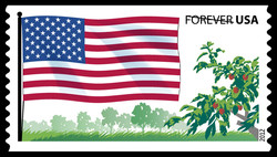 Stars and Stripes - American Flag United States Postage Stamp | Flags of Our Nation