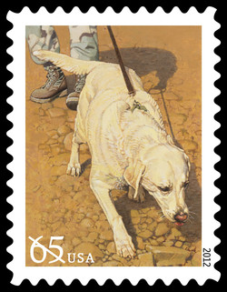 Tracking Dog United States Postage Stamp | Dogs at Work