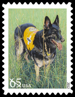Search and Rescue Dog United States Postage Stamp | Dogs at Work