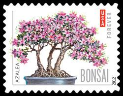 Azalea Bonsai United States Postage Stamp | Bonsai Trees