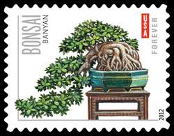 Banyan Bonsai United States Postage Stamp | Bonsai Trees