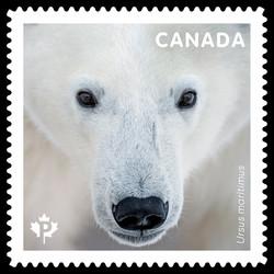 Polar Bear - Ursus Maritimus Canada Postage Stamp | Bears