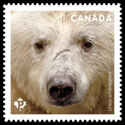 Kermode Bear - Ursus Americanus Canada Postage Stamp | Bears